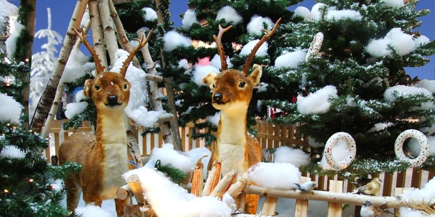 Weihnachten im KaufPark Dresden