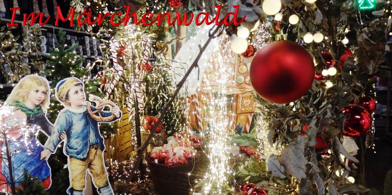 Wunderschöner Weihnachtsmarkt bei Pflanzen Kölle